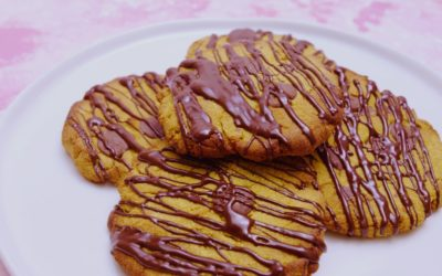 Choc Spice Cookies