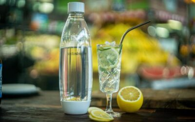 Gin and Tarragon Lemonade